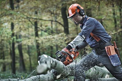 Skogsröjning